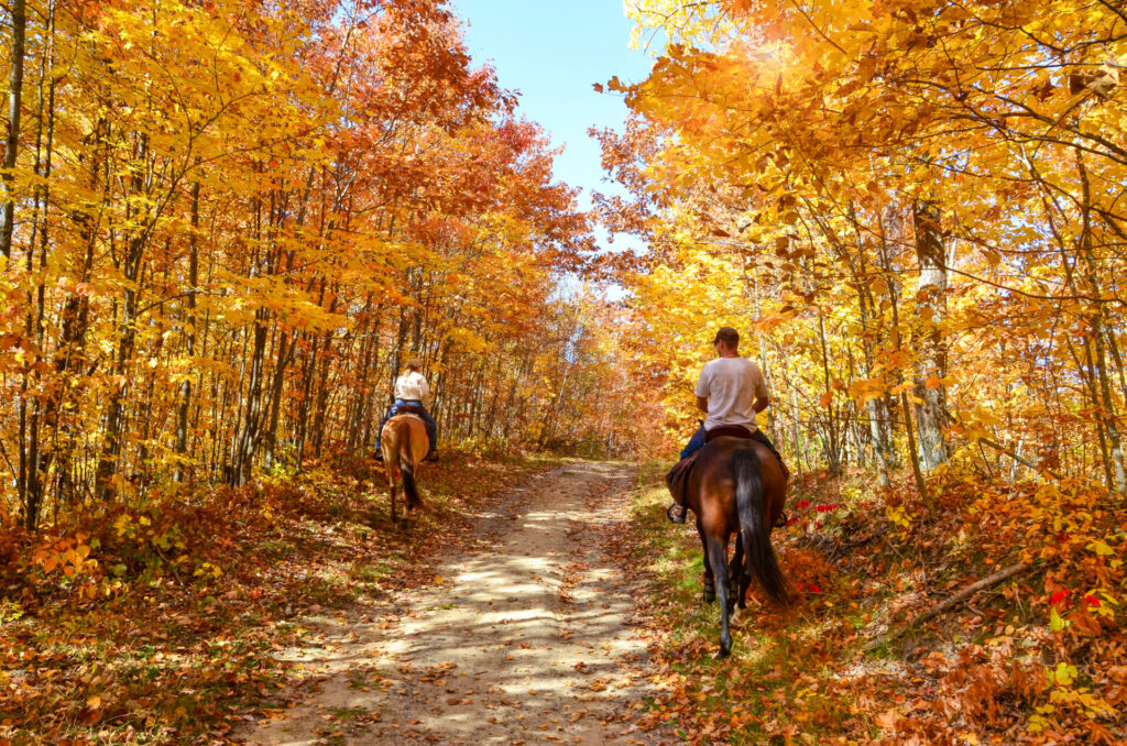 image of a couple horseback trail riding in ct.