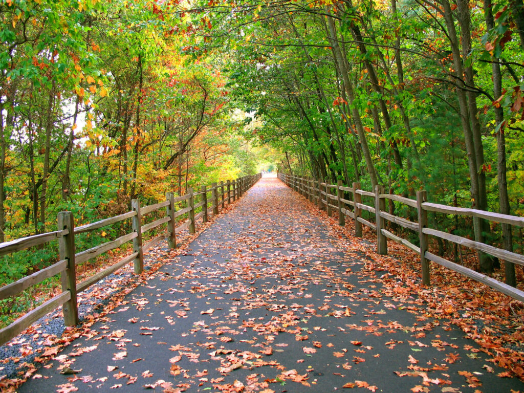 image of one of the paved walking trails in ct.